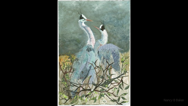 Springtime for Herons